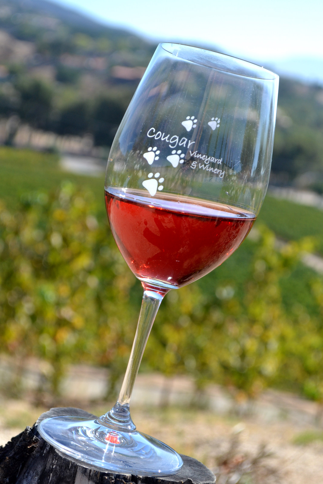 Self Guided Temecula Wine Tour