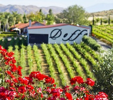 Doffo Vineyard & Winery