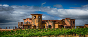 Robert Renzoni Vineyards & Winery